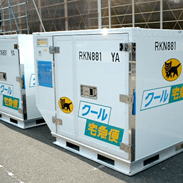 Air Freight Refrigerated Container